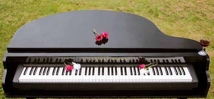 Steveway Grand Pianos