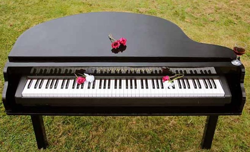 Steveway Portable Baby Grand Piano Shells