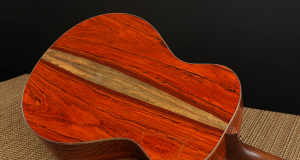 Introducing the Breedlove Masterclass Concerto