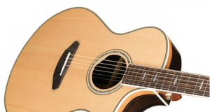 NAMM 2017 Breedlove Stage Exotic