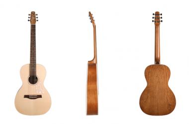 Seagull-Guitars-New-Entourage-Series