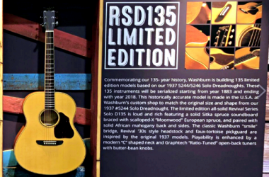 Washburn RSD135D