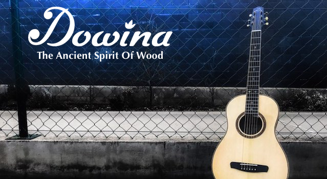 Dowina Guitars