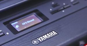 Yamaha P-515
