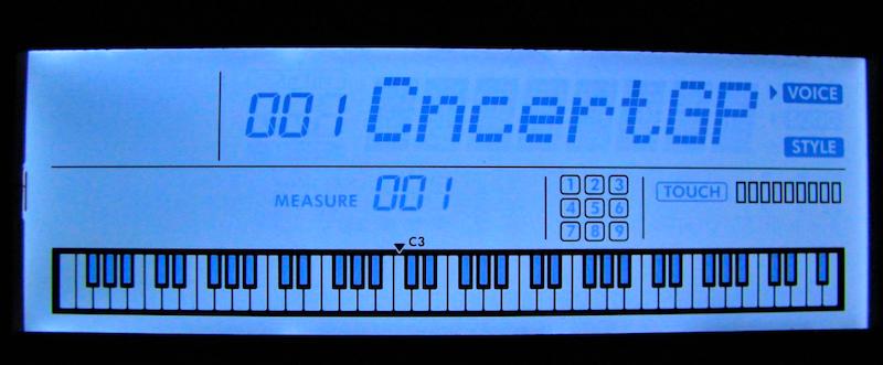 PSR EW310 Screen