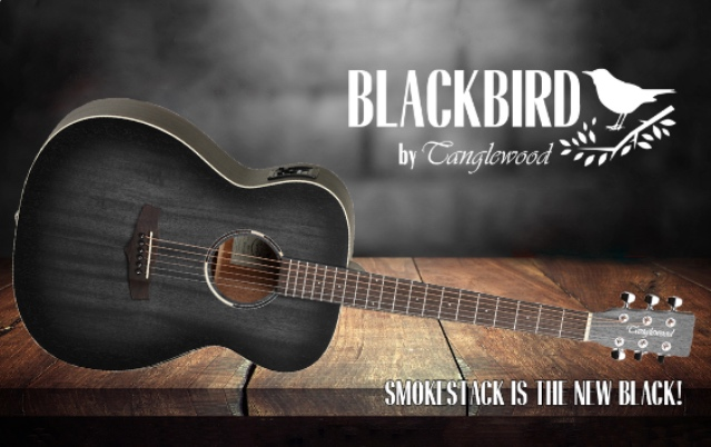 Tanglewood Blackbird Review