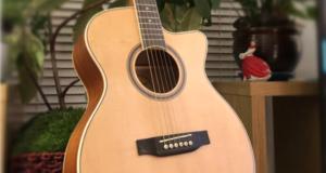 Hartwood Prime Acoustic Guitar